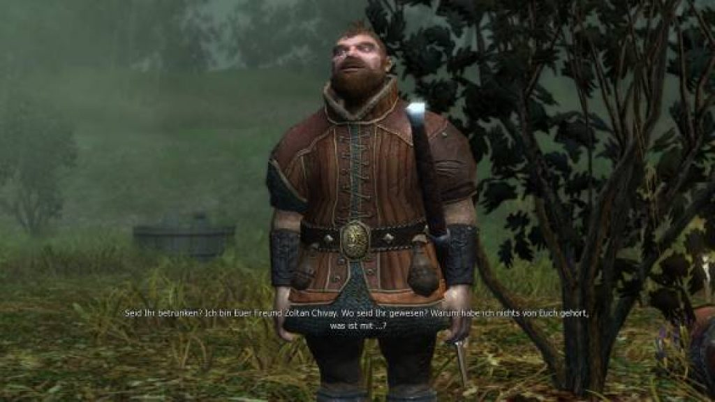 the witcher 1 download pc game